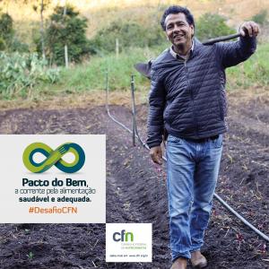 Post redes13 300x300 Pacto do Bem, a corrente pela alimentação saudável e adequada. #DesafioCFN   2015/2016