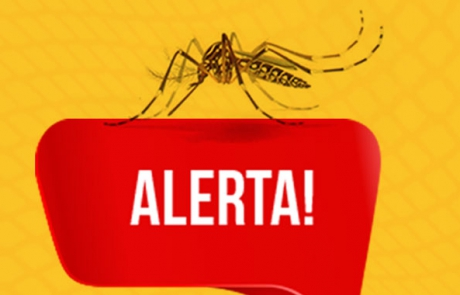 Aedes-Aegypit-Vetor-Norte
