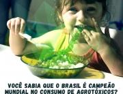 Foto: Greenpeace Brasil