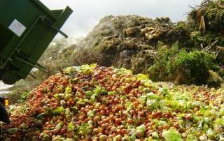desperdicio-de-alimentos-720x426