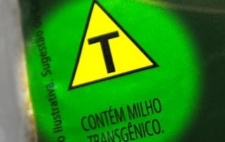 transgenicos- susconecta