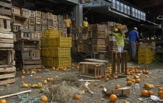Desperdício de alimentos preocupa a FAO | Foto: Tânia Rêgo/Agência Brasil