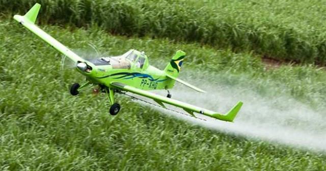 Brasil tem atualmente 2.232 agrotóxicos em circulação no mercado   Foto: Eliana Aponte/Agência Brasil