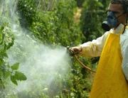 Homem aplica agrotóxico em plantação em Paty do Alferes | Foto: Mônica Imbuzeiro / Agência O Globo/25-8-2004